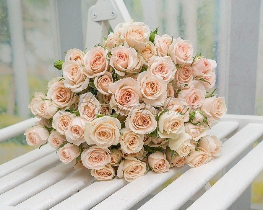 Букет невесты Утренняя свежесть