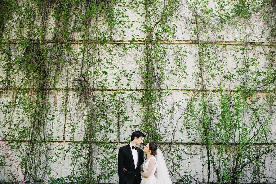 Фото 15088014 в коллекции Свадебные торжества - E5 wedding - организация свадеб
