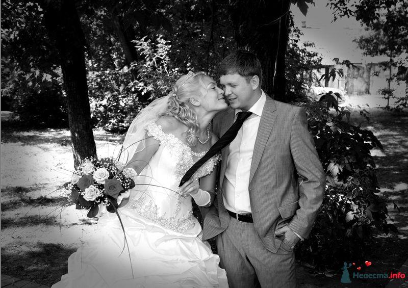 Фото 126636 в коллекции Свадьба  Александра и Нины - Фотограф Марат Лялин