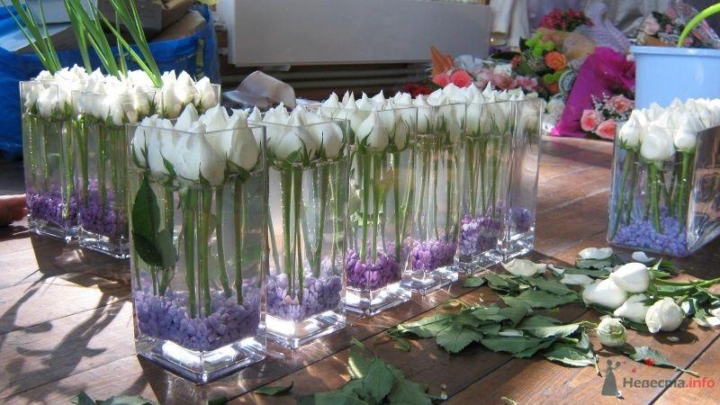 Композиции на столы, в средину еще добавлялся фиолетовый ирис. - фото 36167 Вашкетова Юлия - организатор свадеб, флорист.
