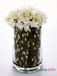 Фото 51873 в коллекции Цвяточки!  - Вашкетова Юлия - организатор свадеб, флорист.
