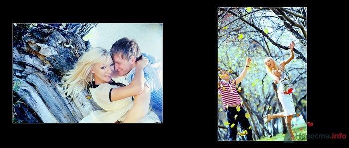 Фото 68346 в коллекции Идеи для  Лов стори на 14 февраля - Вашкетова Юлия - организатор свадеб, флорист.