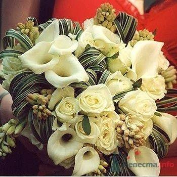 Фото 71400 в коллекции Цвяточки!  - Вашкетова Юлия - организатор свадеб, флорист.