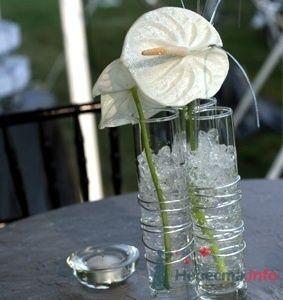 Фото 74494 в коллекции Цвяточки!  - Вашкетова Юлия - организатор свадеб, флорист.