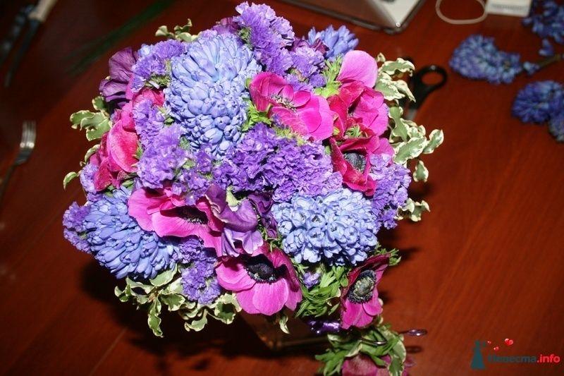 Фото 102507 в коллекции Портфолио. Прогулка с Наташей. 30.04.2010 - Вашкетова Юлия - организатор свадеб, флорист.