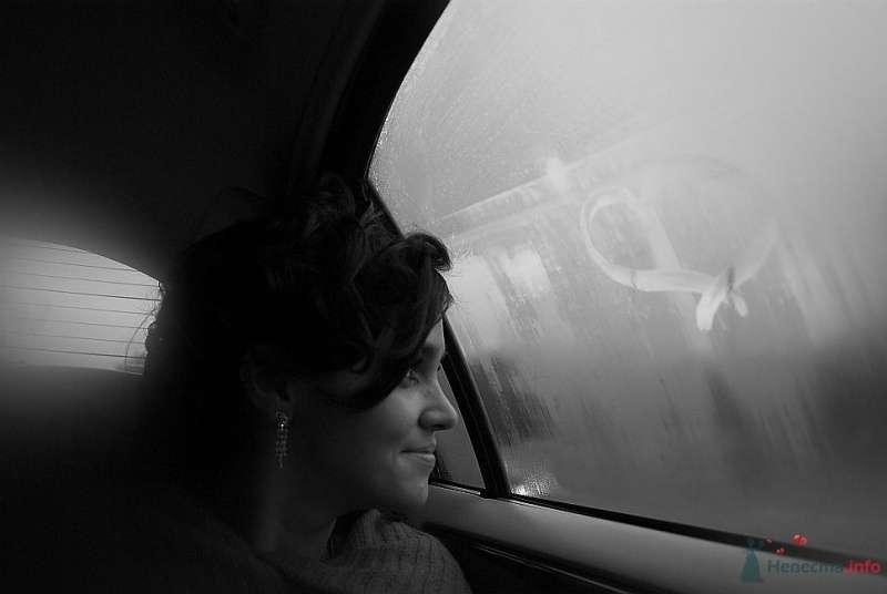Фото 35479 в коллекции Свадьба СПб - Lunik