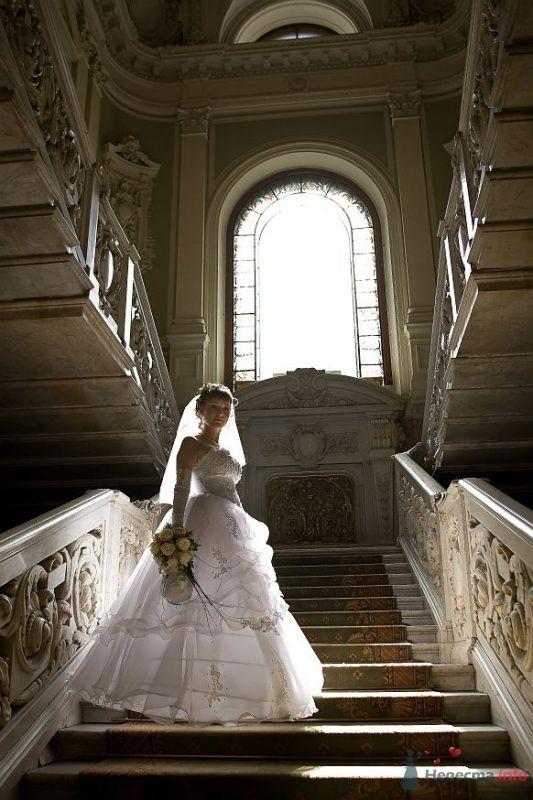 Фото 35482 в коллекции Свадьба СПб - Lunik
