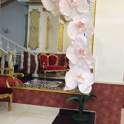 Гигантские орхидеи, цена за 1 шт