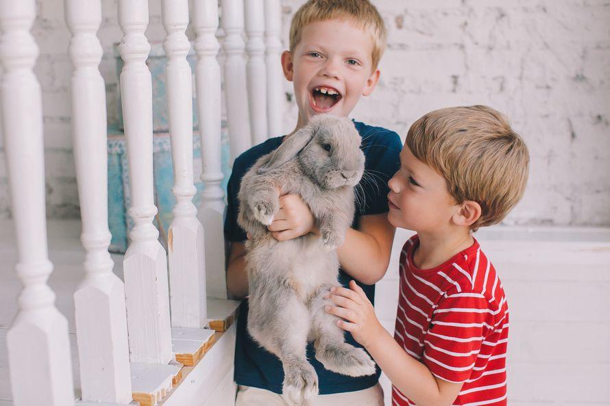 Семейная и детская фотосъёмки, 1 час