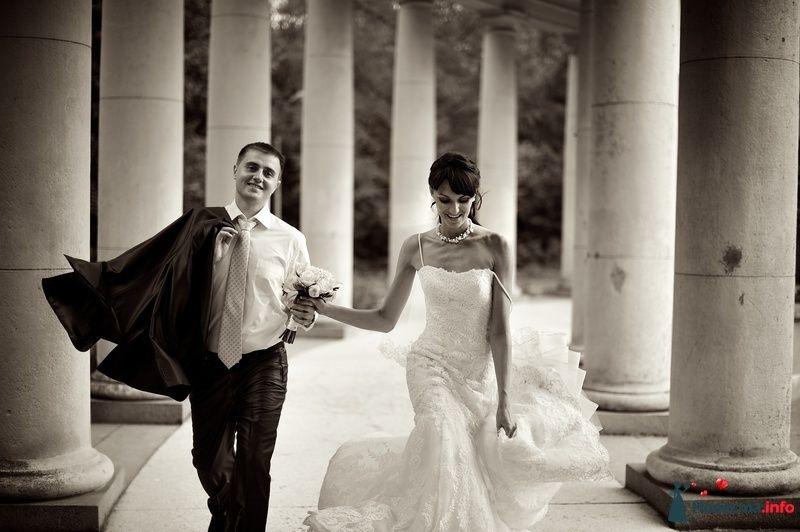 Фото 127262 в коллекции Свадебные фотографии - Геннадий Котельников - видео и фотоуслуги