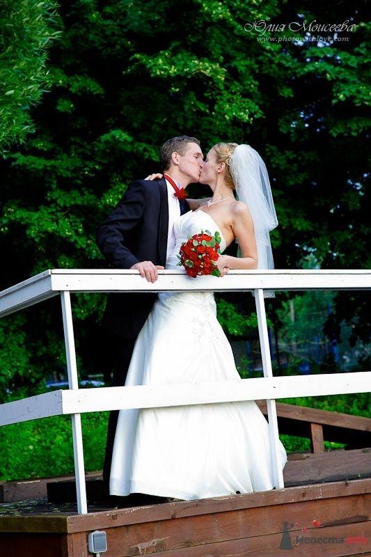 """Фото 57439 в коллекции Свадьба на воде в яхт-клубе """"Нептун"""" - Свадебный фотограф Моисеева Юлия"""