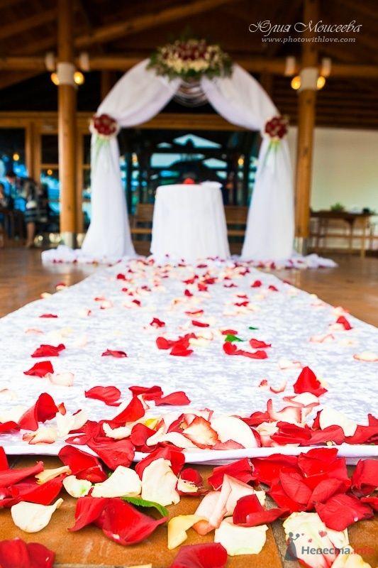 """Фото 58032 в коллекции Свадьба на воде в яхт-клубе """"Нептун"""" - Свадебный фотограф Моисеева Юлия"""