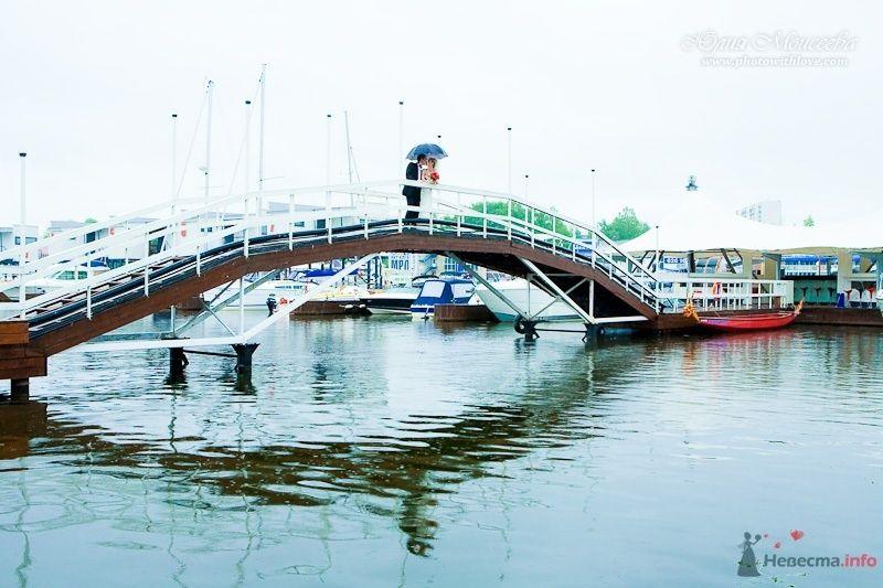 свадьба в яхтклубе - фото 61582 Свадебный фотограф Моисеева Юлия