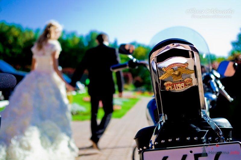 свадьба мотоцикл Харли Дэвидсон - фото 62534 Свадебный фотограф Моисеева Юлия