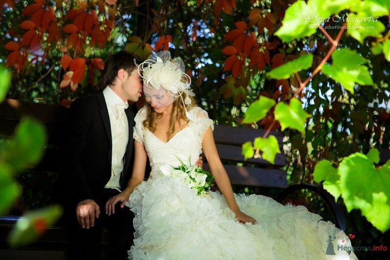 Свадьба Моисеева Юлия - фото 62542 Свадебный фотограф Моисеева Юлия