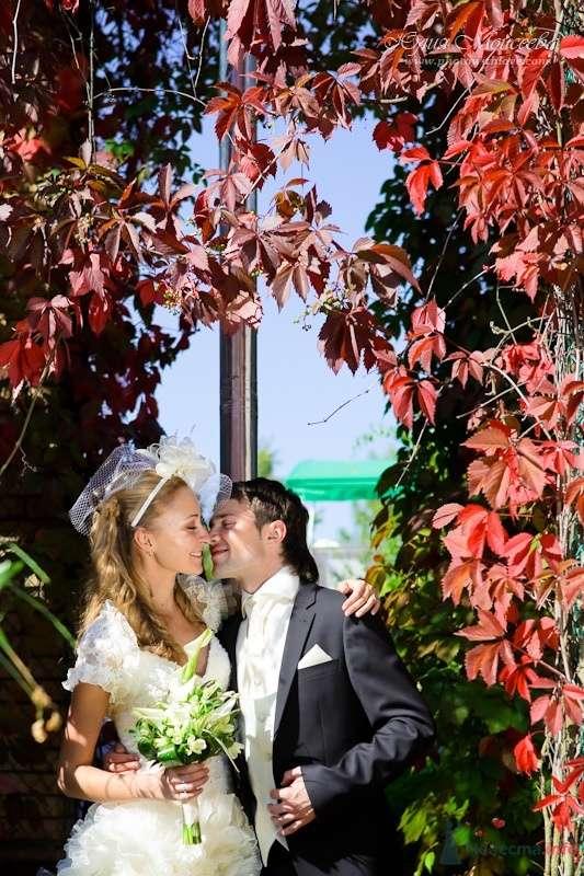 Романтическое фото - фото 62551 Свадебный фотограф Моисеева Юлия