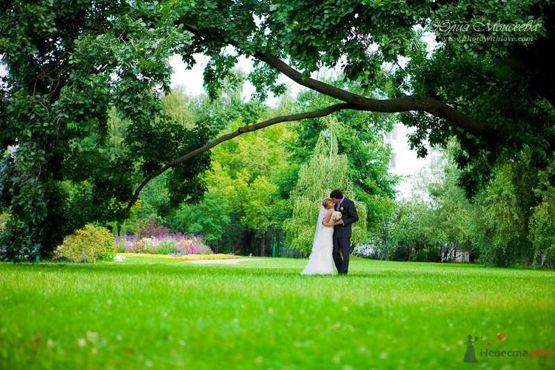 Фото 62626 в коллекции Мои фотографии - Свадебный фотограф Моисеева Юлия