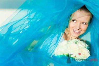 Фото 73447 в коллекции Мои фотографии - Свадебный фотограф Моисеева Юлия