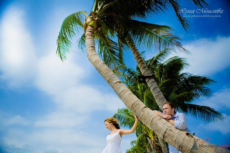 свадьба летом - фото 80349 Свадебный фотограф Моисеева Юлия