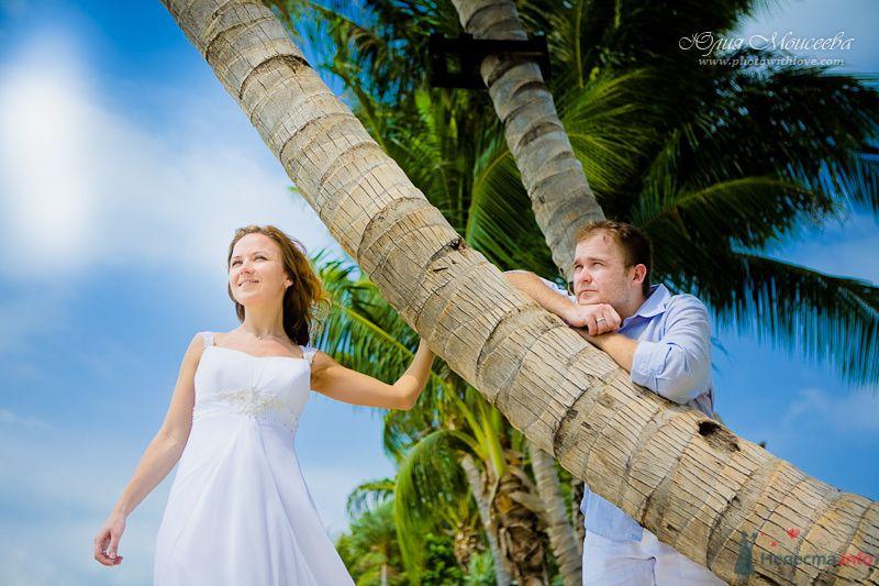 Жених и невеста стоят вместе возле пальмы