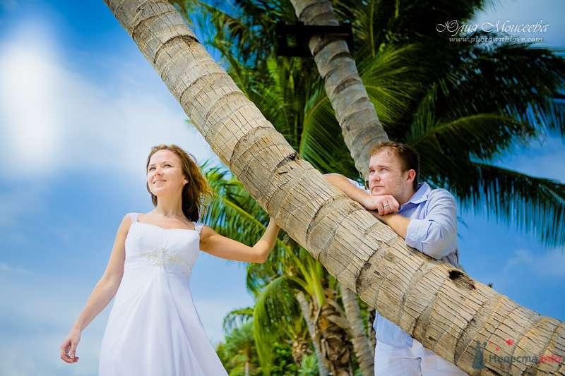 Жених и невеста стоят вместе возле пальмы - фото 80403 Свадебный фотограф Моисеева Юлия