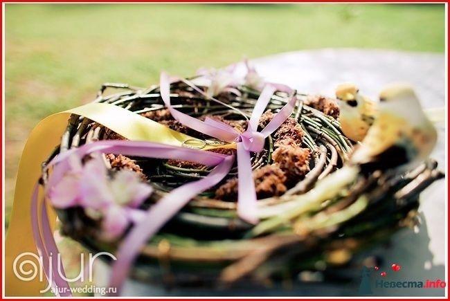Фото 113008 в коллекции Мои фотографии - Свадебный фотограф Моисеева Юлия