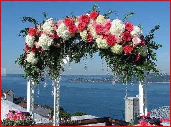 Фото 118370 в коллекции Мои фотографии - Свадебный фотограф Моисеева Юлия