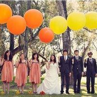 05 Жених и невеста, друзья жениха и невесты, и шары