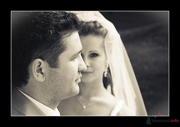 Фото 35786 в коллекции Свадьба Ирины и Алишера - Фотограф Вилена Экон