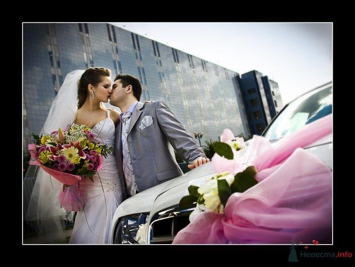 Фото 38101 в коллекции Свадьба Ирины и Алишера - Фотограф Вилена Экон