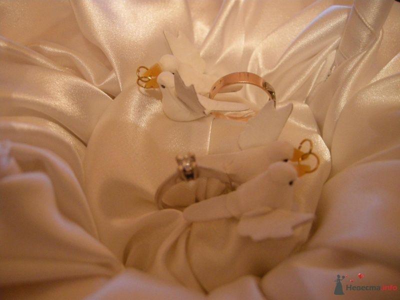 Фото 28928 в коллекции для свадьбы - AngeLady