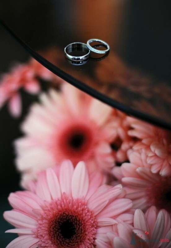 Фото 52950 в коллекции свадьба... - AngeLady