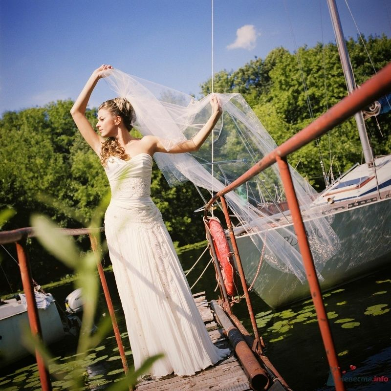 Фото 52970 в коллекции свадьба...