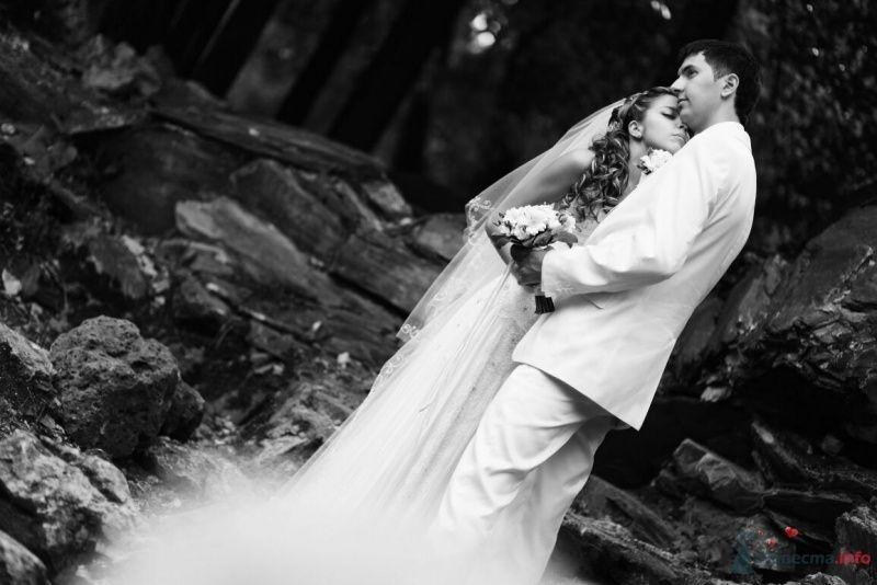 Фото 53003 в коллекции свадьба...