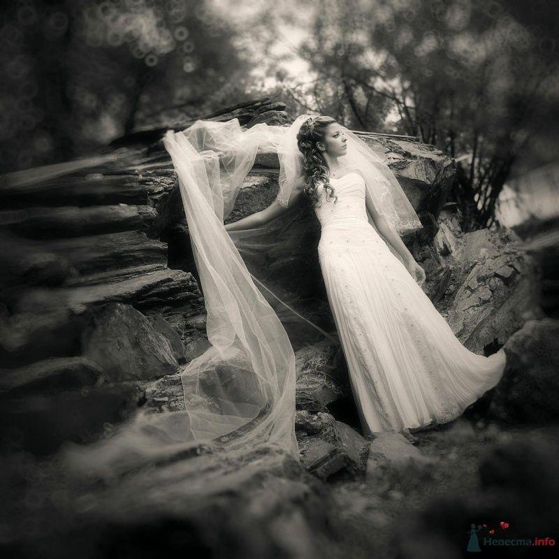 Фото 53004 в коллекции свадьба... - AngeLady
