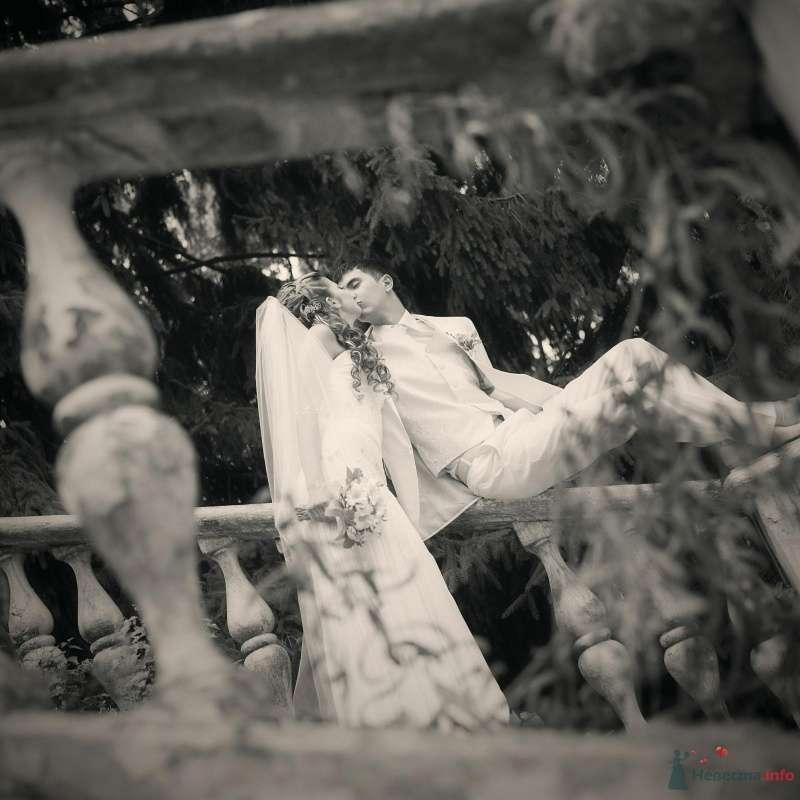 Фото 53012 в коллекции свадьба... - AngeLady