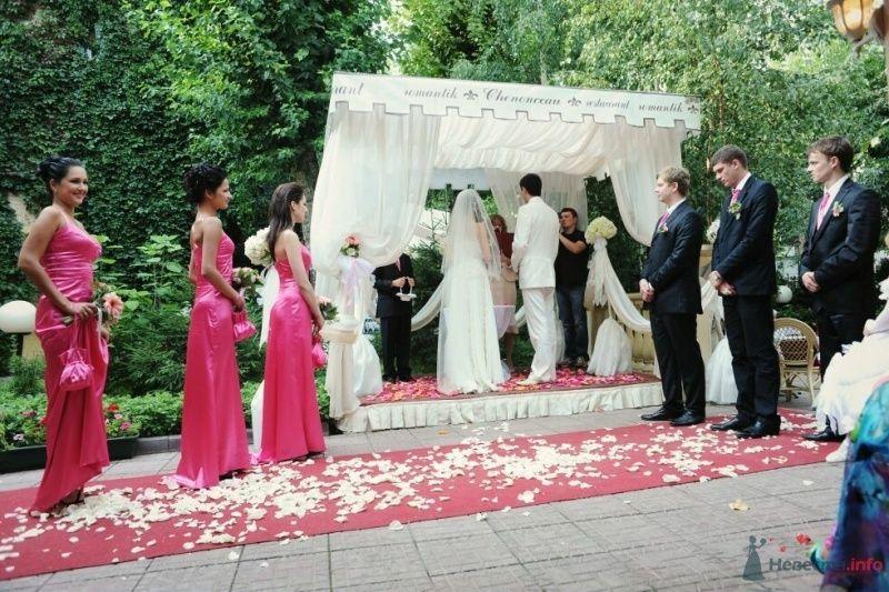Фото 53031 в коллекции свадьба...