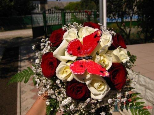 Фото 3294 - Невеста01