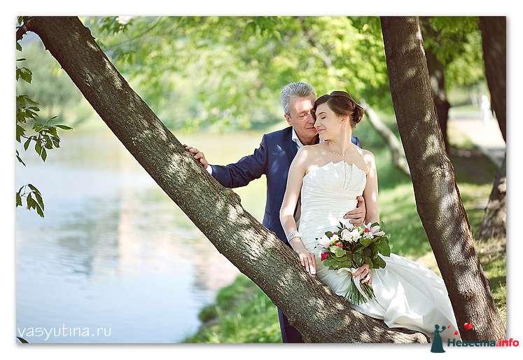 Фото 118011 в коллекции Свадьбы - Фотограф Таня Якуб
