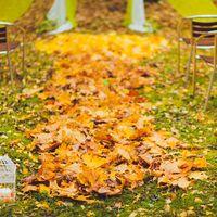 природная дорожка из желтых листьев, ведущая к арке