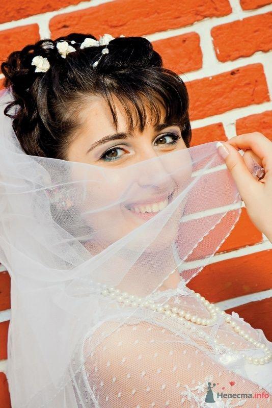 Фото 38216 в коллекции Свадьба - anyuta-ma