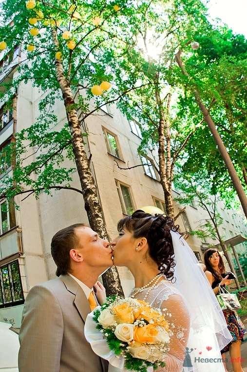 Фото 38270 в коллекции Свадьба - anyuta-ma