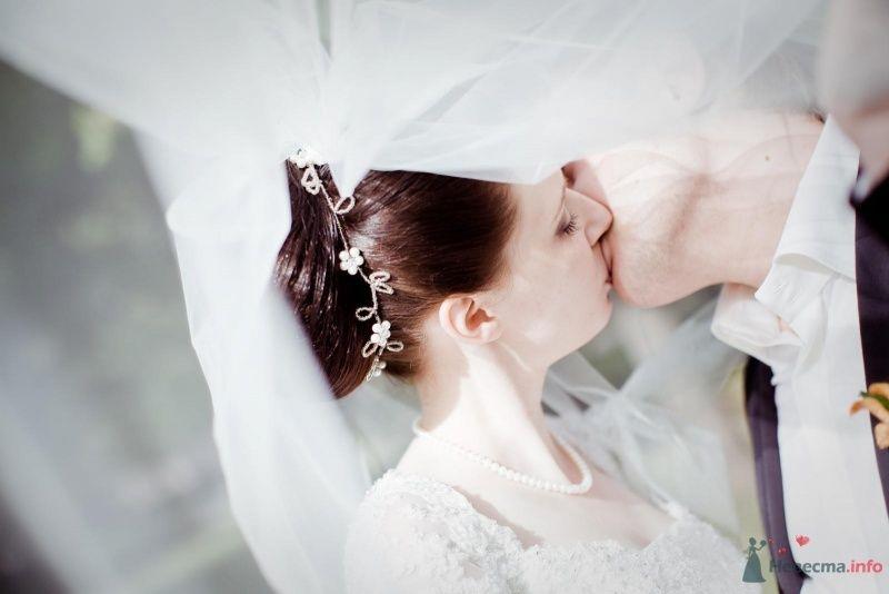 Посеребренный ободок для волос со стразами в виде цветов  - фото 53710 ларина т