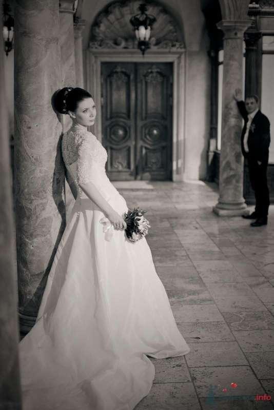 Фото 53727 в коллекции свадьба-фотограф елена кузнецова - ларина т