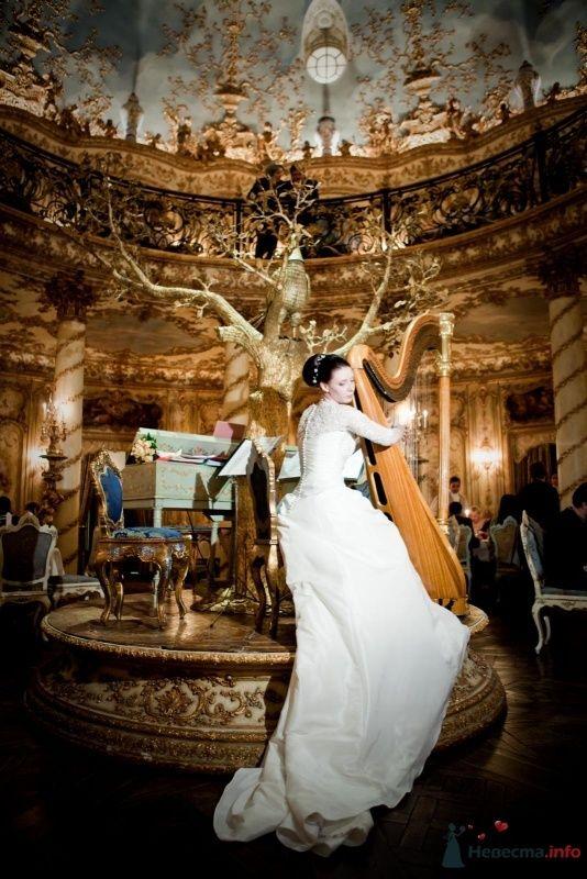 Фото 53729 в коллекции свадьба-фотограф елена кузнецова - ларина т
