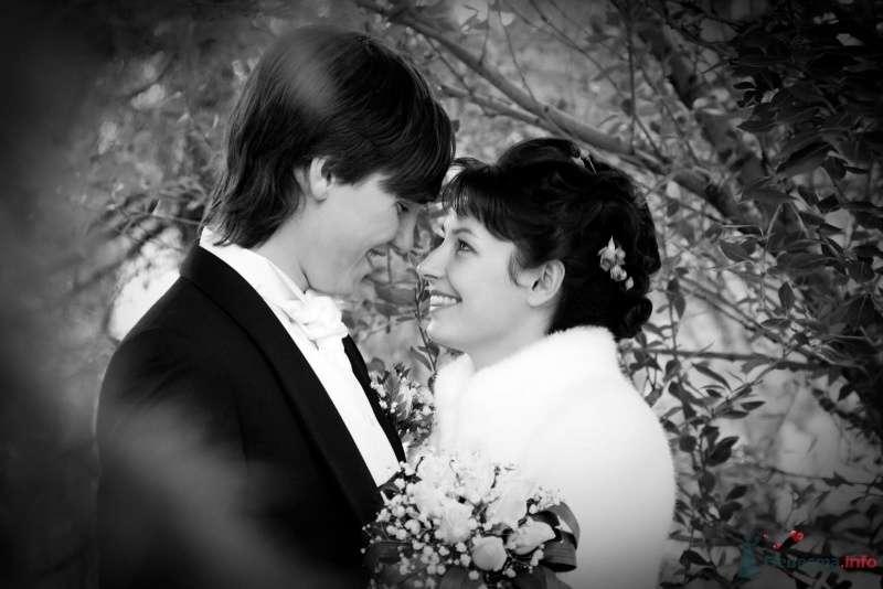 Жених и невеста стоят, прислонившись друг к другу, в зимнем лесу - фото 45791 Селенка