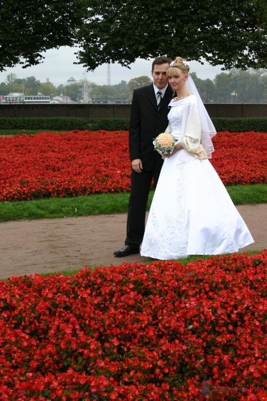 Елена и Слава - фото 39785 AAllAA