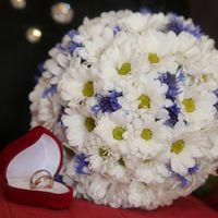 Букет невесты из белых ромашек и синих васильков