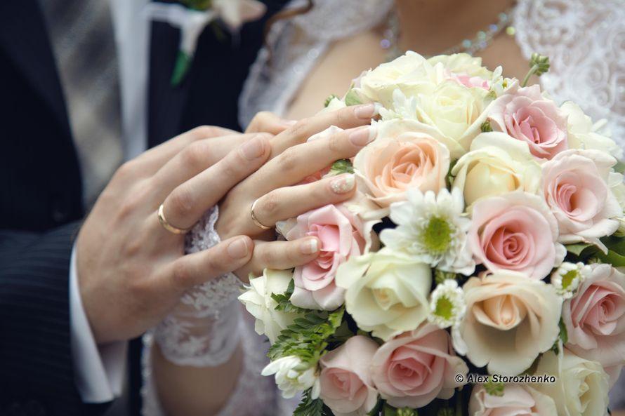Фото 556392 в коллекции Свадебные фото - Фотограф Alex Storozhenko