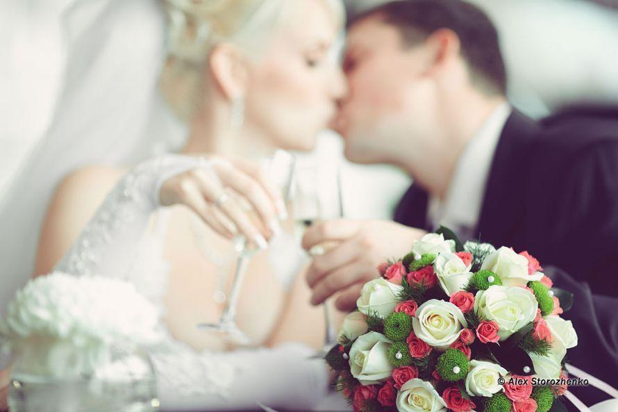 Фото 835225 в коллекции Свадебные фото - Фотограф Alex Storozhenko